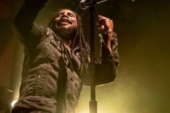 Sevendust concert photo Norva